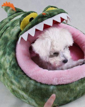 Cartoon Dog Bed