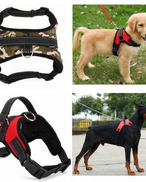 Nylon Heavy Duty Dog Harness